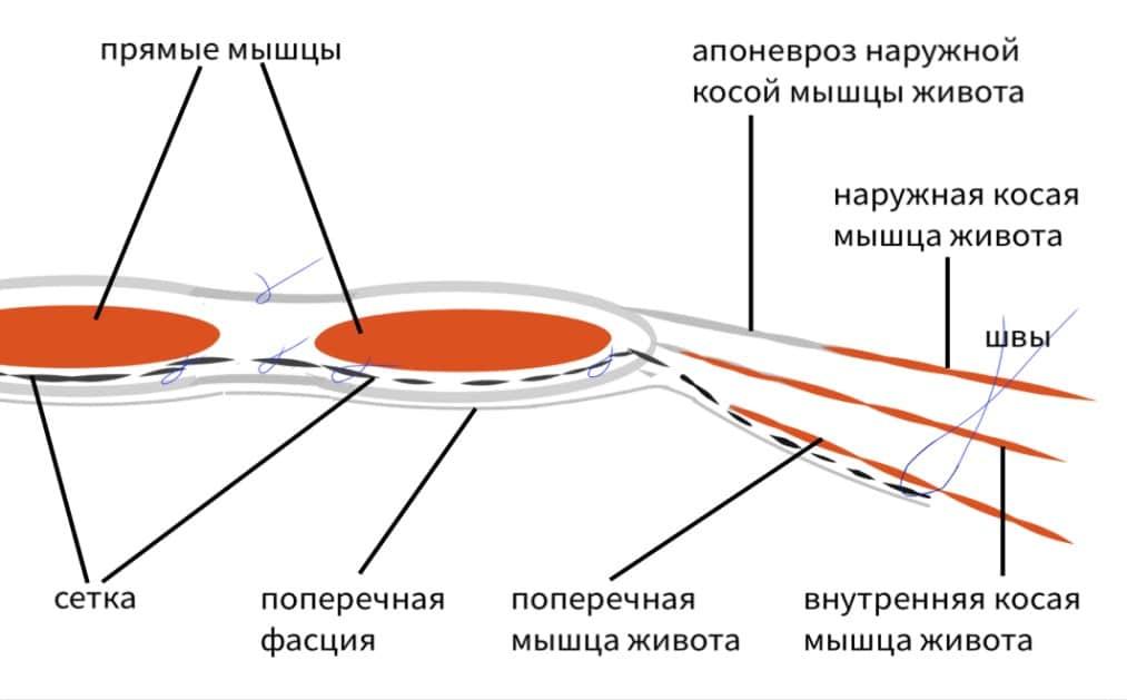 Novitsky